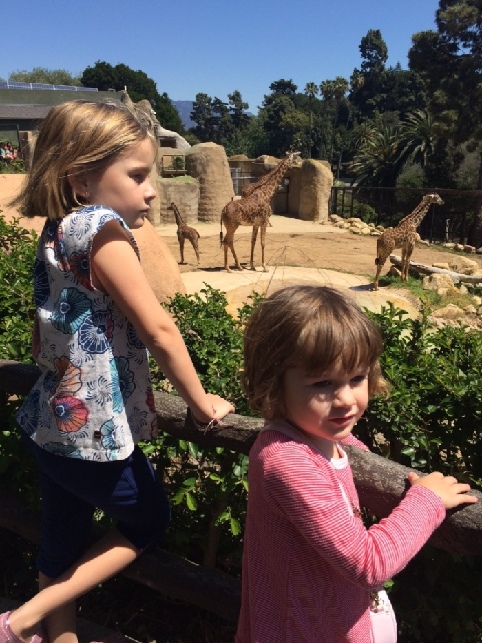 santabarbara-zoo 23616