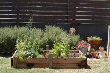 edible-garden 23634